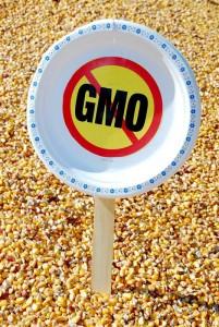 NO GMO Plate Sign