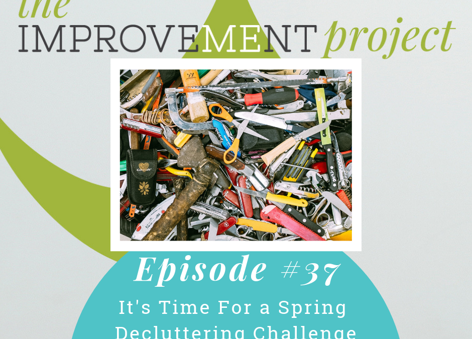 It's Time For a Spring Decluttering Challenge – 037