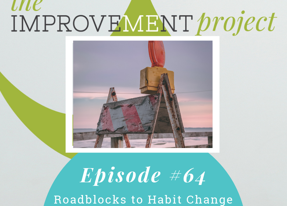 Roadblocks To Habit Change – 064
