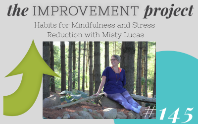 Habits for Mindfulness and Stress Reduction with Misty Lucas – 145